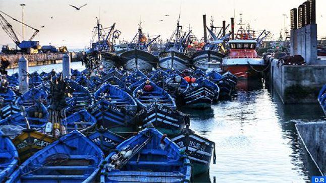 قراءة لوحة قيادة الاستراتيجيات القطاعية في الاقتصاد الوطني (الصيد البحري) (10/3)